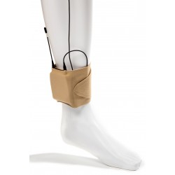 VSX-Ankle